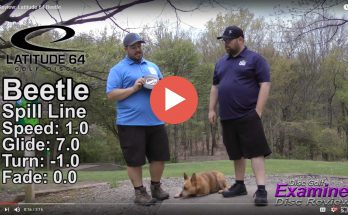 Disc Review Beetle